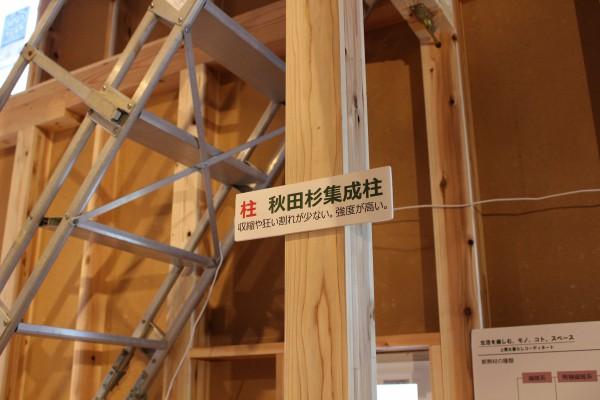 構造は大きさだけではなく、適材適所で樹種の指定もあります