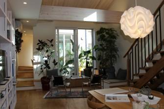 観葉植物や多肉植物も室内にたくさん有り