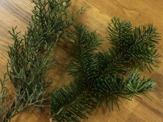 ブルーアイス(左)モミの木(右)