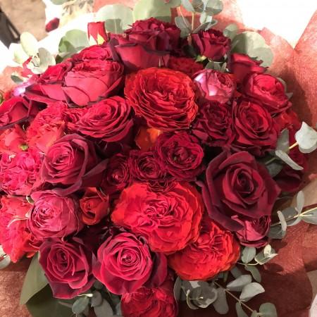 バラの花60輪の大きな花束