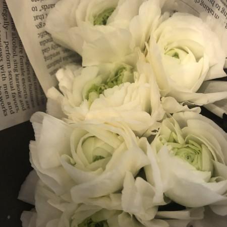 ラナンキュラス 当店でも1番人気ともいえるラナンキュラス。まぁるく、ふわっと咲く姿はなんとも愛らしいです。