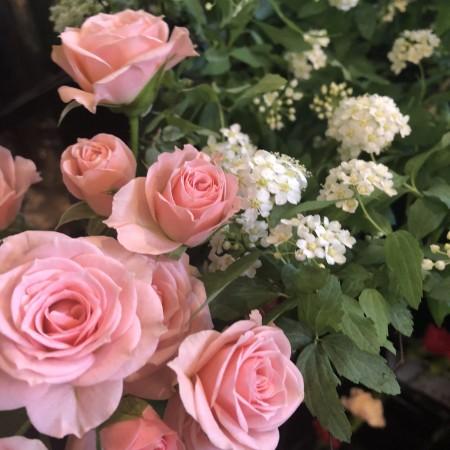 バラ×コデマリ 少しベージュがかったピンクのバラはリディアと言います。コデマリとあわせるとぐっと春らしくなります。